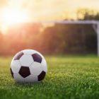 Amendements sur-mesure pour terrains sportifs